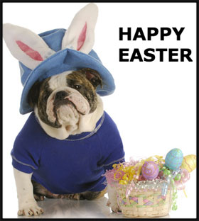 EasterBulldogNL